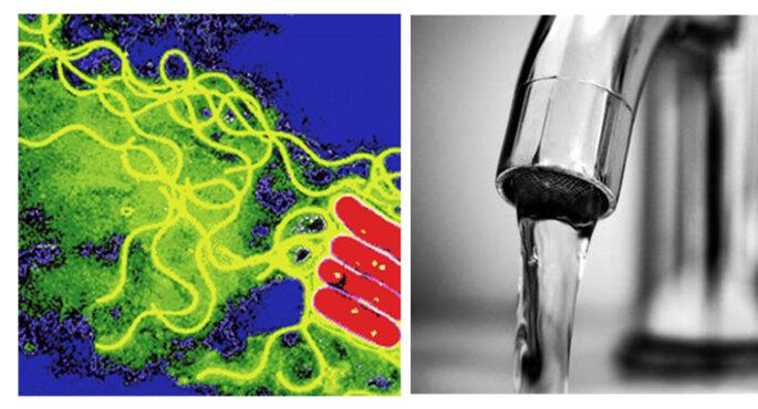 water-tap-and-legionella